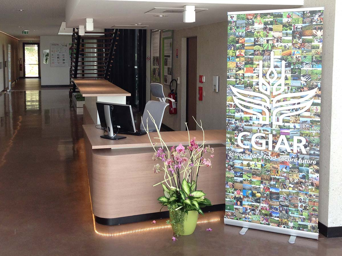 mosaic banner cgiar consortium office